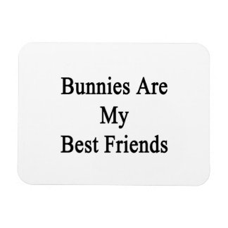Los conejitos son mis mejores amigos imán de vinilo