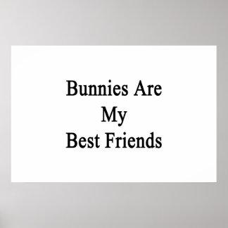 Los conejitos son mis mejores amigos poster