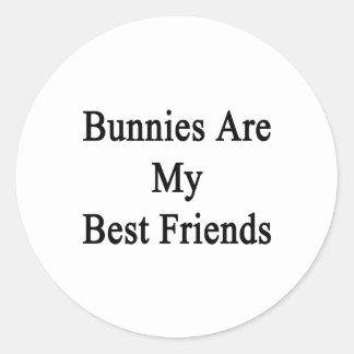 Los conejitos son mis mejores amigos pegatinas redondas