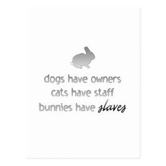 Los conejitos tienen esclavos postales