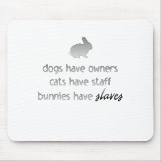 Los conejitos tienen esclavos tapete de ratones