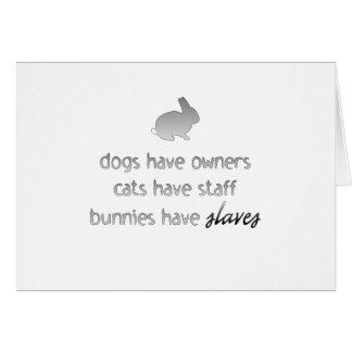 Los conejitos tienen esclavos tarjeta