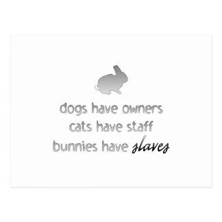 Los conejitos tienen esclavos tarjetas postales