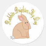 Los conejos aclaran mi día etiquetas redondas