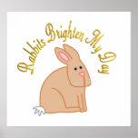 Los conejos aclaran mi día poster