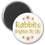 Los conejos aclaran mi vida imán