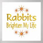 Los conejos aclaran mi vida posters