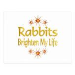 Los conejos aclaran mi vida tarjeta postal