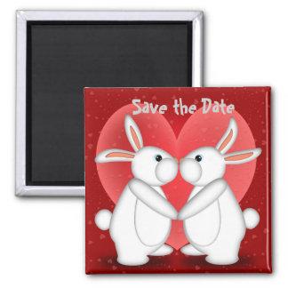 Los conejos blancos que se besan, ahorran el imán
