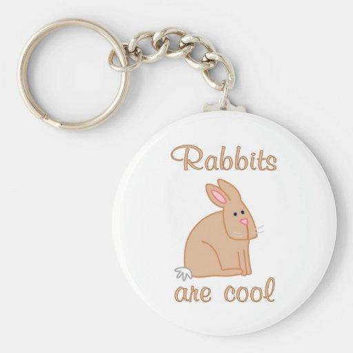 Los conejos son frescos llavero personalizado