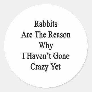 Los conejos son la razón por la que no tengo YE Pegatina Redonda