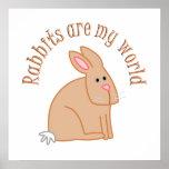 Los conejos son mi mundo poster