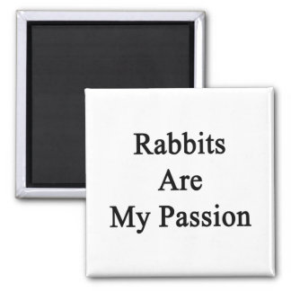 Los conejos son mi pasión imán