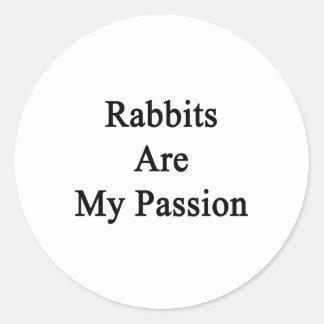 Los conejos son mi pasión pegatina redonda