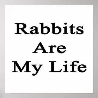 Los conejos son mi vida poster