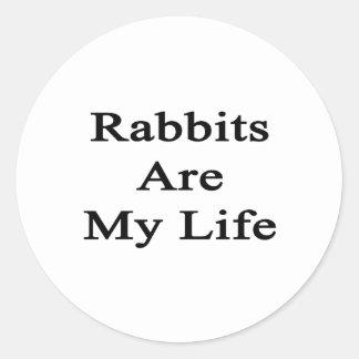 Los conejos son mi vida etiqueta redonda