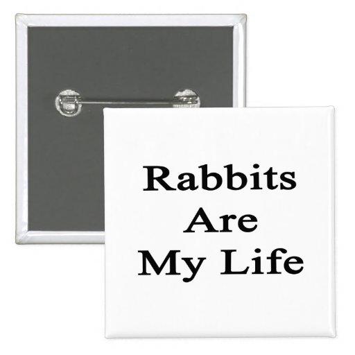 Los conejos son mi vida pins