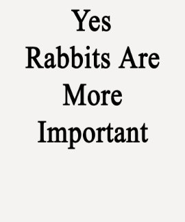 Los conejos son sí más importantes camisetas