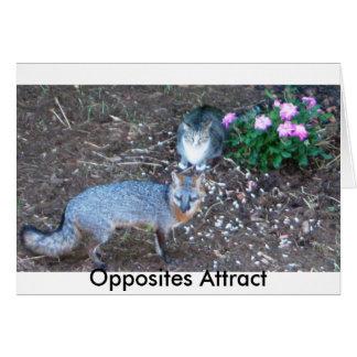 Los contrarios atraen tarjeta pequeña