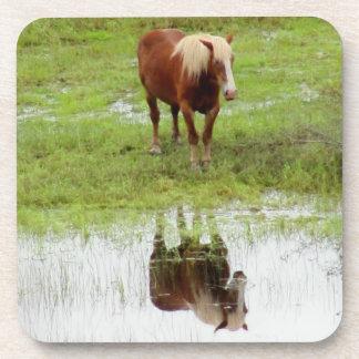Los controles del caballo de granja es reflexión posavasos