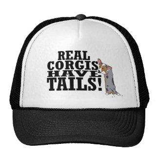 Los Corgis reales tienen colas Gorra