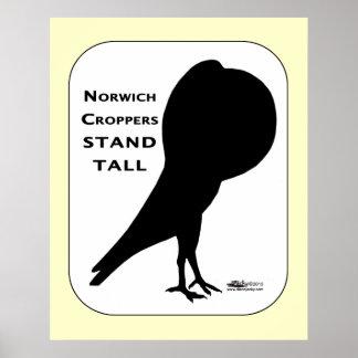 Los cosechadores de Norwich se colocan altos Impresiones