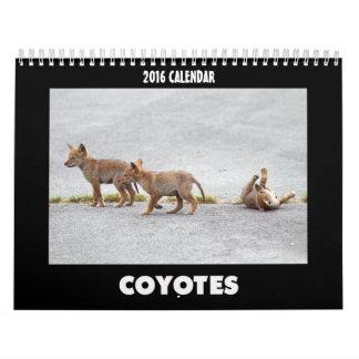 Los coyotes hacen calendarios 2016