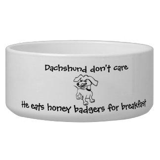 Los Dachshunds comen tejones de miel Boles Para Gatos
