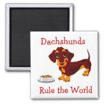 Los Dachshunds gobiernan el imán del perrito del