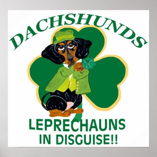 Los Dachshunds son Leprechauns en disfraz Póster