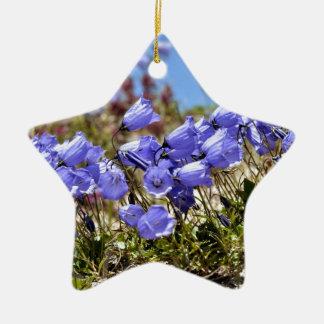Los dedales de las hadas en las montañas francesas adorno de cerámica en forma de estrella