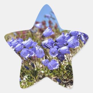 Los dedales de las hadas en las montañas francesas pegatina en forma de estrella