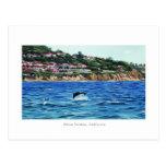Los delfínes acercan a Palos Verdes Tarjetas Postales
