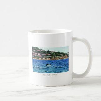Los delfínes acercan a Palos Verdes Taza