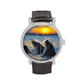 Los delfínes botella-sospechados en luz de la relojes de pulsera