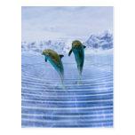 Los delfínes hacen ondulaciones tarjeta postal