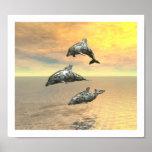 Los delfínes impresiones