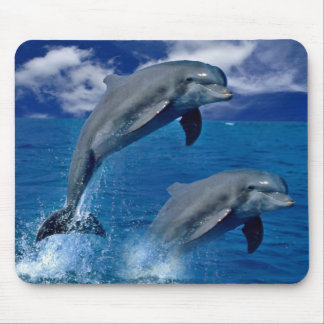 Los delfínes que saltan para la alegría en un cojí tapetes de ratones