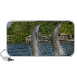 Los delfínes que saltan, Roatan, islas de la bahía Mini Altavoces