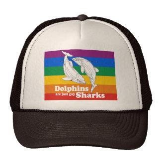 Los delfínes son apenas tiburones gay gorros