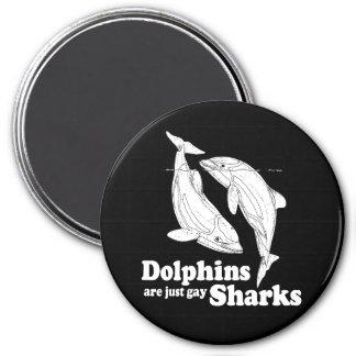 Los delfínes son apenas tiburones gay iman de nevera