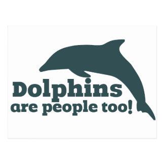 ¡Los delfínes son gente también! Postal