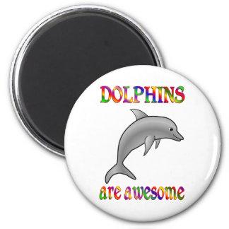 Los delfínes son impresionantes imanes