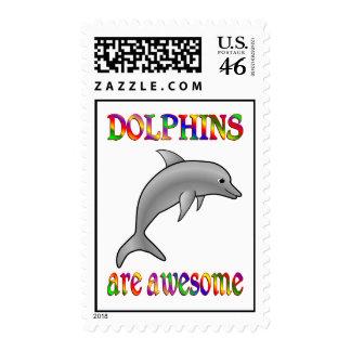 Los delfínes son impresionantes