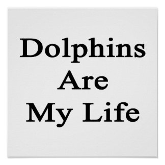 Los delfínes son mi vida poster