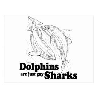 Los delfínes son tiburones gay tarjetas postales