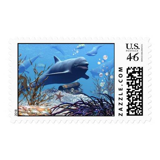 Los delfínes y el cofre del tesoro franqueo