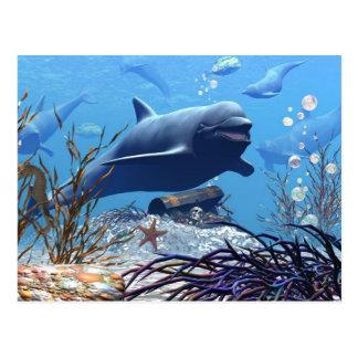 Los delfínes y la postal del cofre del tesoro
