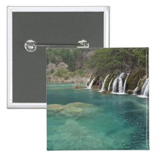 Los depósitos minerales aclaran las cascadas y pin