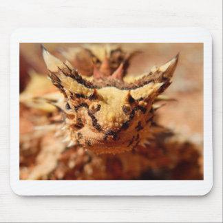 ¡Los diablos espinosos son frescos! Tapetes De Raton
